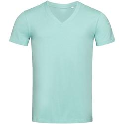 Kleidung Herren T-Shirts Stedman Stars  Eisblau