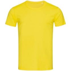 Kleidung Herren T-Shirts Stedman Stars Stars Gänseblümchen-Gelb