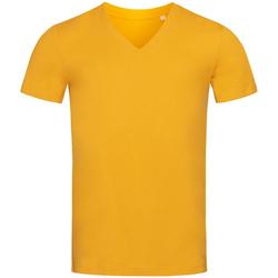 Kleidung Herren T-Shirts Stedman Stars  Indisches Gelb