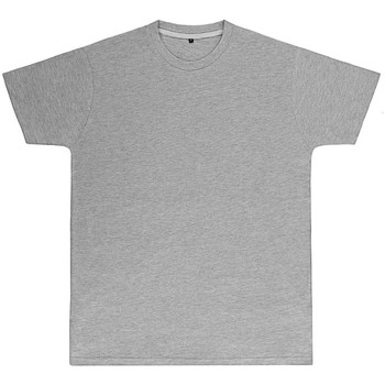 Kleidung Herren T-Shirts Sg Perfect Hellgrau