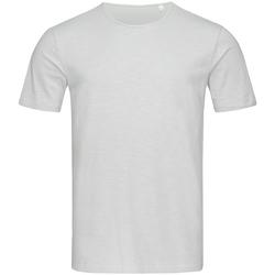 Kleidung Herren T-Shirts Stedman Stars Shawn Puder Grau