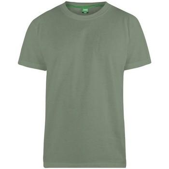 Kleidung Herren T-Shirts Duke  Khaki