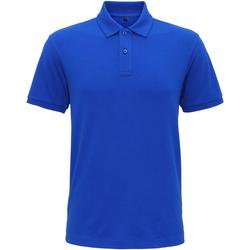Kleidung Herren Polohemden Asquith & Fox AQ005 Hell Royal