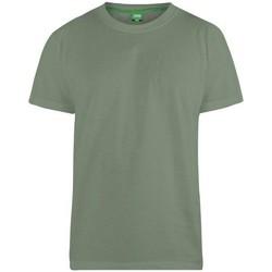 Kleidung Herren T-Shirts Duke Flyers-2 Khaki
