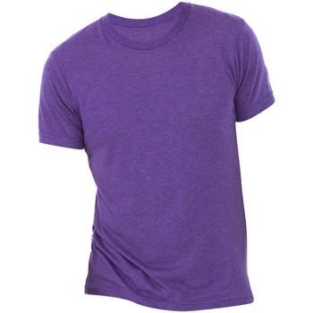 Kleidung Herren T-Shirts Bella + Canvas CA3413 Violett Triblend