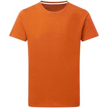Kleidung Herren T-Shirts Sg Perfect Orange