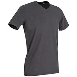 Kleidung Herren T-Shirts Stedman Stars Clive Schiefergrau