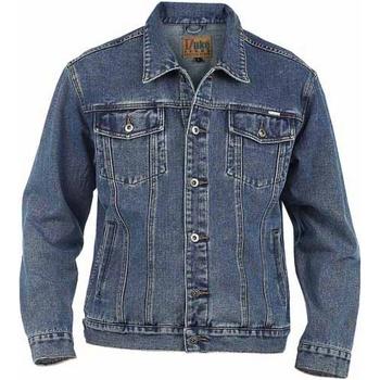 Kleidung Herren Jeansjacken Duke  Stonewash