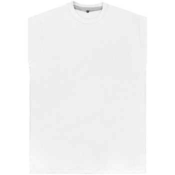 Kleidung Herren T-Shirts Sg Perfect Weiß