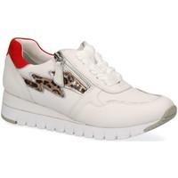 Schuhe Damen Sneaker Caprice Schnuerschuhe Da.-Schnürer 9-9-23700-24/197 197 weiß