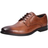 Schuhe Herren Derby-Schuhe Ecco Herren Schnürschuh braun