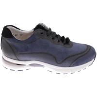 Schuhe Damen Wanderschuhe Calzaturificio Loren CLORA1068bl blu