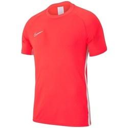 Kleidung Herren T-Shirts Nike Academy 19 Rot