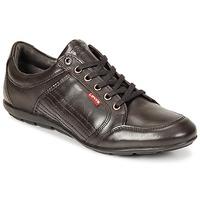 Schuhe Herren Derby-Schuhe Levi's TOULON Braun