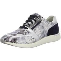 Schuhe Damen Sneaker Low Sioux Schnuerschuhe Malosika-701 64994 blau