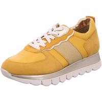 Schuhe Damen Sneaker Low Tamaris Schnuerschuhe 23747-691 gelb