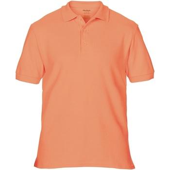 Kleidung Herren Polohemden Gildan Premium Terrakotta