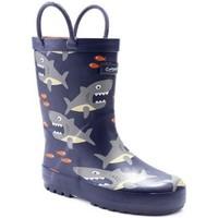 Schuhe Jungen Gummistiefel Cotswold  Haifisch