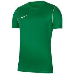 Kleidung Herren T-Shirts Nike Park 20 Grün