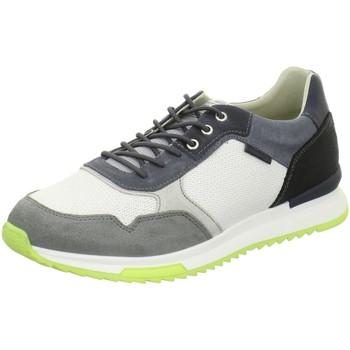 Schuhe Herren Sneaker Low Bullboxer 989K20438AWHGB grau