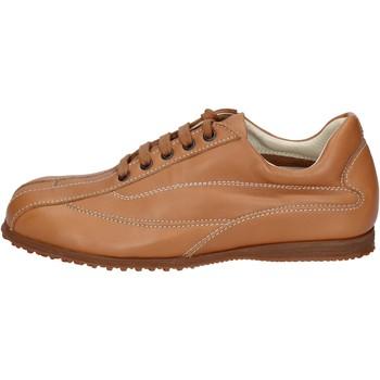 Schuhe Herren Sneaker Low Hogan BN129 braun