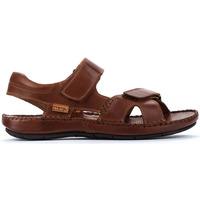 Schuhe Herren Sandalen / Sandaletten Pikolinos TARIFA 06J CUERO