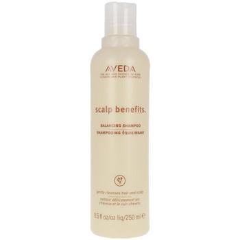 Beauty Shampoo Aveda Scalp Benefits Balancing Shampoo  250 ml
