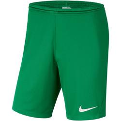 Kleidung Herren Shorts / Bermudas Nike Park III Knit Short NB Grün