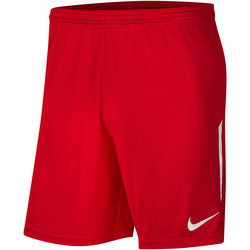 Kleidung Herren Shorts / Bermudas Nike League Knit II Short NB Rot