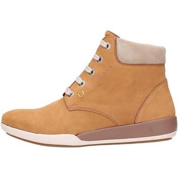 Schuhe Damen Boots Benvado MOIRA Multicolore