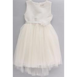Kleidung Kinder Kleider & Outfits Bella Brilli BB203038 Elfenbein