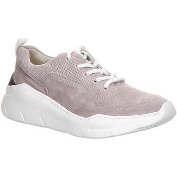 Schuhe Damen Sneaker Low Paul Green Schnuerschuhe 0066-4920-066/Sneaker 4920-066 grau