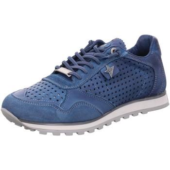 Schuhe Damen Sneaker Low Cetti Schnuerschuhe C848 SRA royal Other