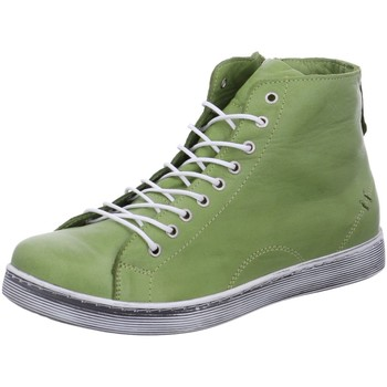 Schuhe Damen Boots Andrea Conti Stiefeletten 0341500-262 grün