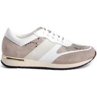 Schuhe Damen Sneaker Low Stephen Allen 10833-C11 Beige