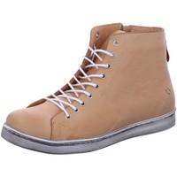 Schuhe Damen Boots Andrea Conti Stiefeletten 0341500-089 beige