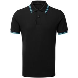 Kleidung Herren Polohemden Asquith & Fox AQ011 Schwarz/Türkis
