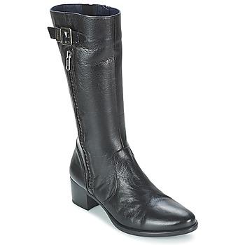 Schuhe Damen Boots Dorking LOLETA Schwarz