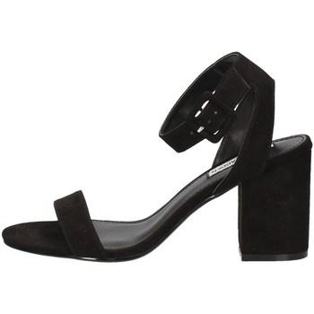 Schuhe Damen Sandalen / Sandaletten Steve Madden MALIA-R BLACK