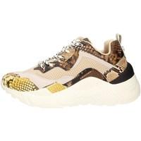 Schuhe Damen Sneaker Low Steve Madden ANTONIA MULTI