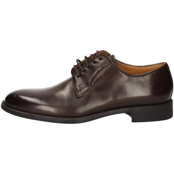 Schuhe Herren Derby-Schuhe Campanile 2637 BROWN