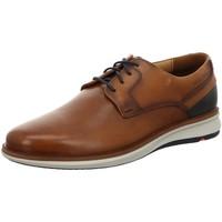 Schuhe Herren Derby-Schuhe Lloyd Schnuerschuhe 1020711 braun