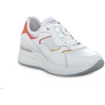 Schuhe Damen Sneaker Low Nero Giardini 707 SKIPPER BIANCO Bianco