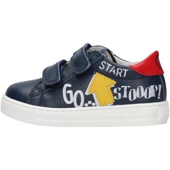 Schuhe Jungen Sneaker Falcotto - Sneaker blu MERVI VL-1C49 BLU
