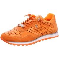 Schuhe Damen Sneaker Low Cetti Schnuerschuhe orange