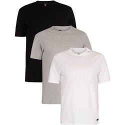 Kleidung Herren T-Shirts Ted Baker 3er Pack Lounge Crew T-Shirts mehrfarbig