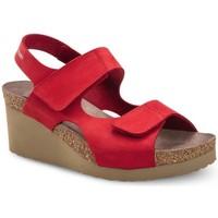 Schuhe Damen Sandalen / Sandaletten Mephisto MEPHTINYro rosso