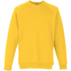 Kleidung Kinder Sweatshirts Fruit Of The Loom 62039 Sonnenblumengelb