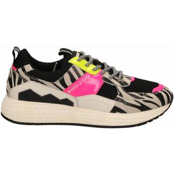 Schuhe Damen Sneaker Low Moa Concept FUTURA BLACK MESH zebra