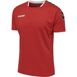 Kleidung T-Shirts Hummel Maillot  hmlAUTHENTIC Poly HML rouge